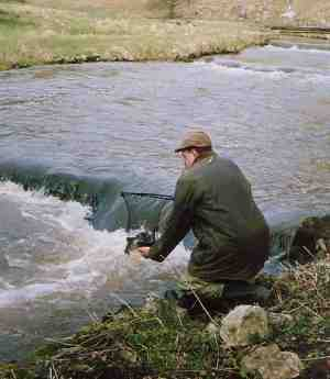 fly fishing river dove